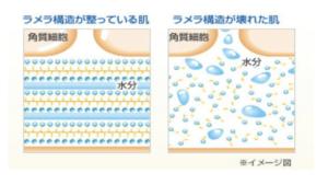 ラメラ構造イメージ図